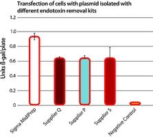Research paper on isolation of plasmid d #4